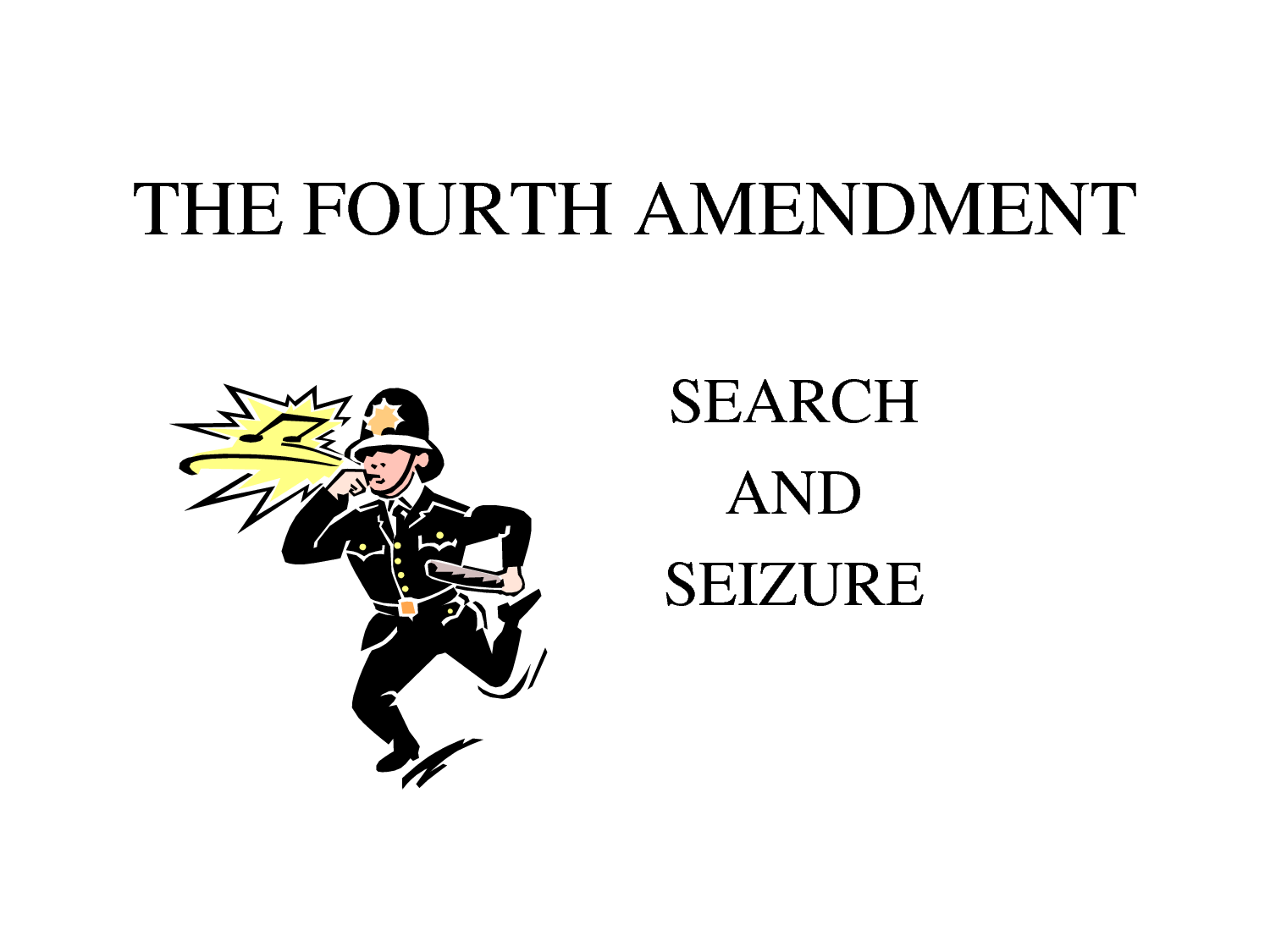 fourth amendment seizure
